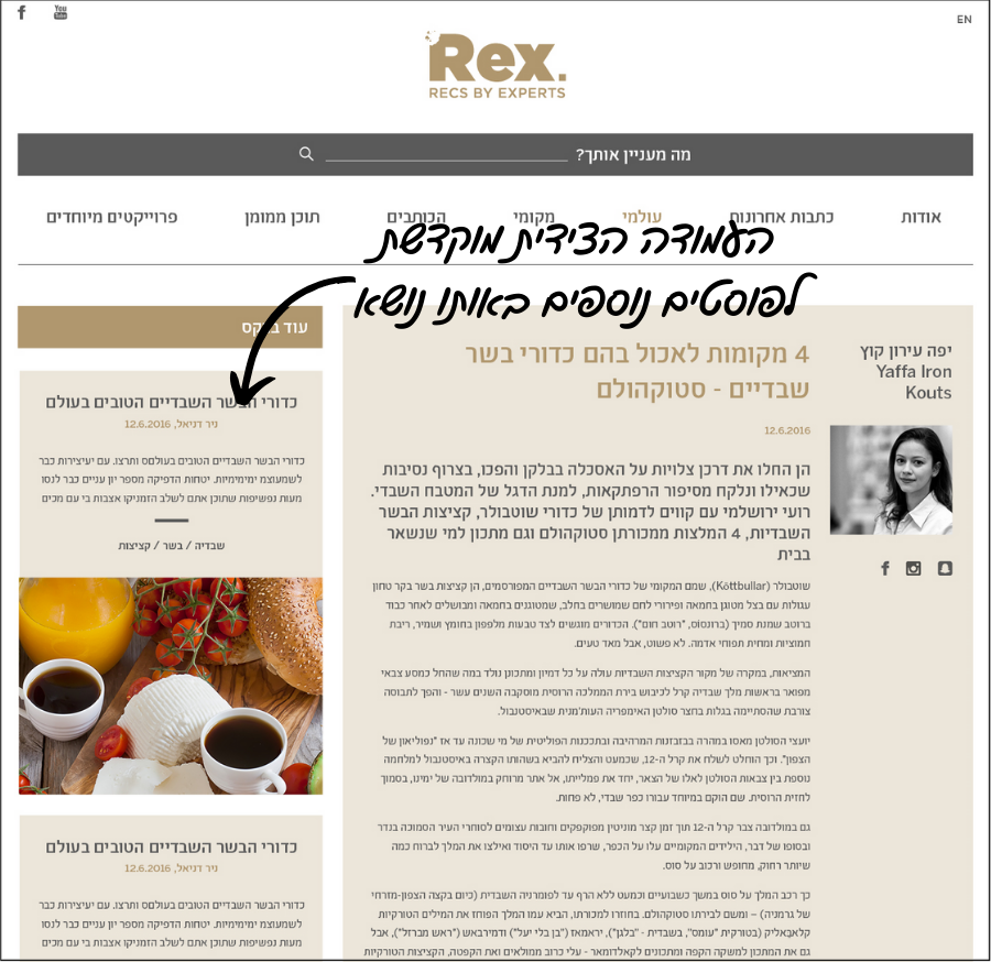 sidebar from rex.co.il  |UX design