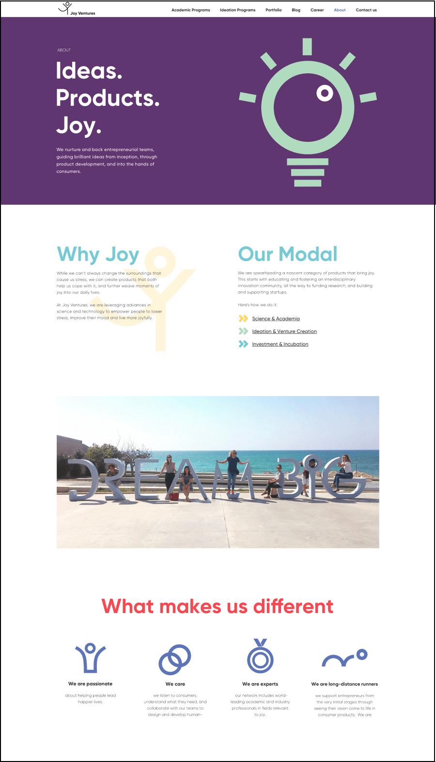 עיצוב אתר מתוך joyventures